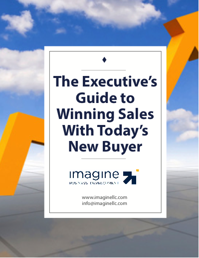 Executives-Guide-To-Winning-B2B-Sales